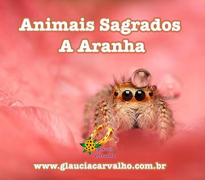 Animais Sagrados - A Aranha