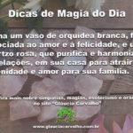 Dicas de magia do dia: como atrair paz e serenidade para sua família