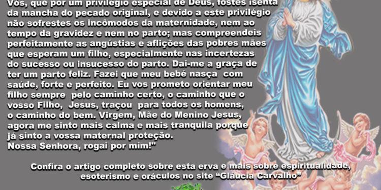 Oração à Nossa Senhora Conceição, padroeira da maternidade, a quem deseja engravidar