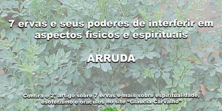 7 ervas e seus poderes de interferir em aspectos físicos e espirituais-ARRUDA