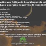 Confira um feitiço da Lua Minguante para banir energias negativas de sua casa