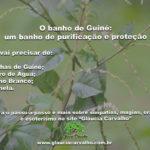 O banho de Guiné: um banho de purificação e proteção