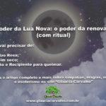 O poder da Lua Nova: o poder da renovação (com ritual)