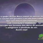 Que o poder da Lua Nova renove as nossas vidas!