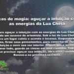 Dicas de magia: aguçar a intuição com as energias da Lua Cheia
