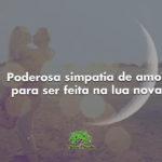 Poderosa simpatia de amor para ser feita na lua nova