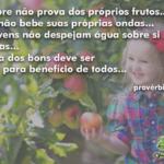 A árvore não prova dos próprios frutos…