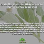 Dica de Magia do dia: Óleo essencial de Sálvia contra depressão