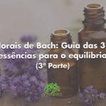 Florais de Bach: Guia das 38 essências para o equilíbrio (3ª Parte)