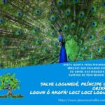 Logunedé, príncipe dos Orixás, pedimos sua bênção! Loci Loci Logun!