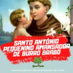 Santo Antônio pequenino, amansador de burro brabo – Ponto Cantado