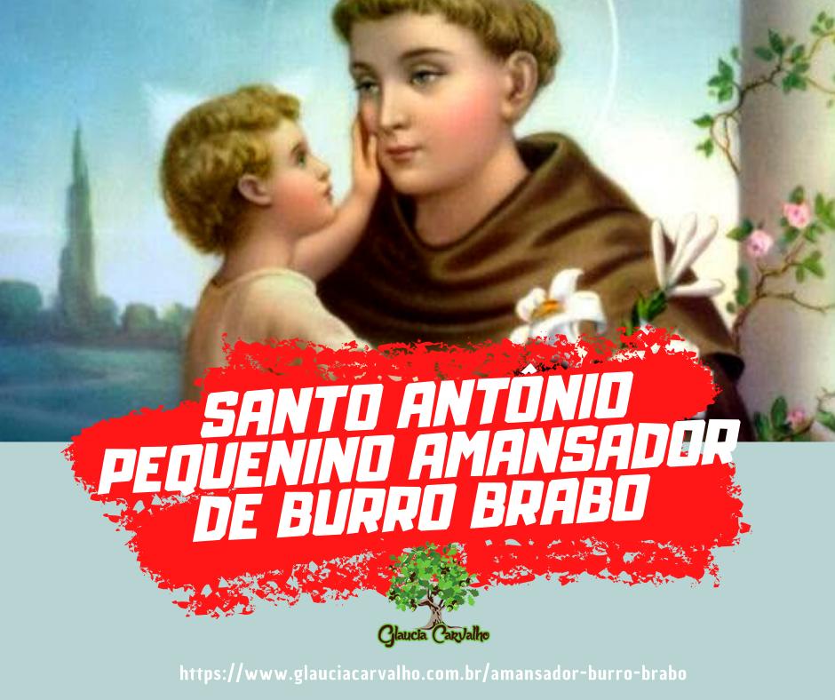 Santo Antonio pequenino amansador de burro brabo
