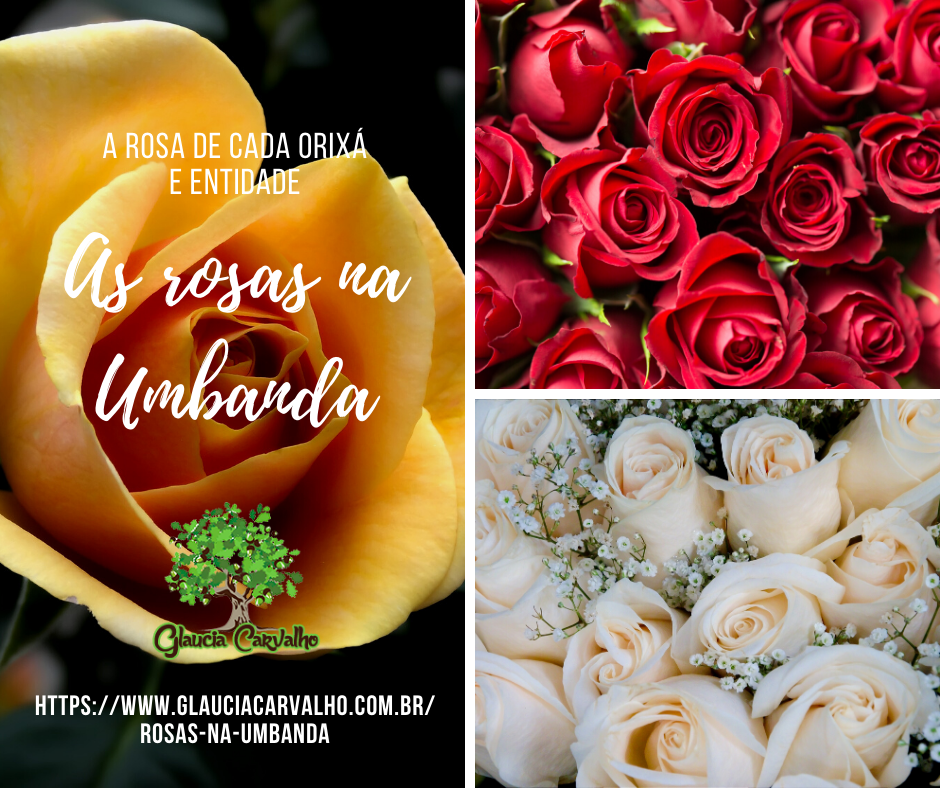 As rosas na Umbanda