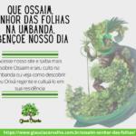 Que Ossaim, Senhor das folhas na Umbanda, abençoe nosso dia