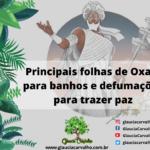Principais folhas de Oxalá para banhos e defumações para trazer paz