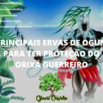 Principais ervas de Ogum para ter proteção do Orixá Guerreiro