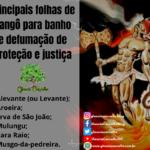 Principais folhas de Xangô para banho e defumação de proteção e justiça